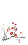 Plum blossom. Ancient Traditional Artistic plum blossom background royalty free illustration