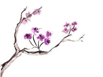Plum blossom. Picture in east style by India ink, sumi-e vector illustration