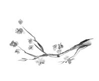 Plum blossom. Picture in east style by India ink, sumi-e stock illustration