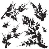 Plum Blossom Branches Silhouette Set stock illustrationer
