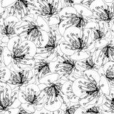 Plum Blossom Flower Outline Seamless Background. Vector Illustration. Plum Blossom Flower Outline Seamless Background. Vector Illustration royalty free illustration