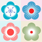 Plum blossom flower pattern symbol Royalty Free Stock Image