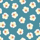 Plum Blossom Flower Seamless branca no fundo azul Ilustração do vetor ilustração royalty free