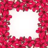 Plum blossom frame Stock Image