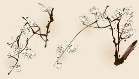 Plum blossom with line design Stock Images