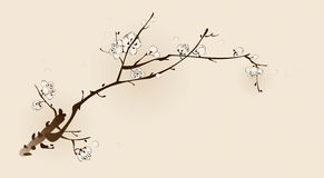 Plum blossom with line design Royalty Free Stock Image
