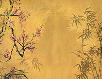 Plum blossom on Old antique Stock Photos