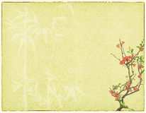 Plum blossom on old antique  paper background Stock Photo