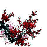 Plum blossom Pattern Royalty Free Stock Images