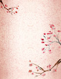 Plum blossomm background Stock Photography