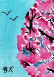 Plum Blossoms com a palavra chinesa para a mola Fotos de Stock Royalty Free