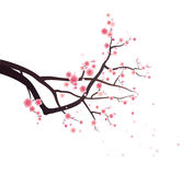 Plum blossoms on tree branch. An illustration of a tree branch with plum blossoms and blowing petals. White background royalty free illustration