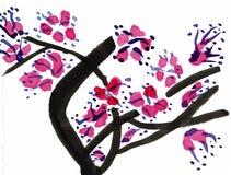 Plum Blossoms - um dos quatro cavalheiros - desenho da tinta Fotografia de Stock