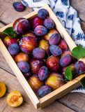 Plum, Box, Fruit, Summer Royalty Free Stock Images