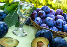 Plum brandy Royalty Free Stock Photo