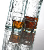 Plum brandy. Domestic plum and walnut brandy Stock Image