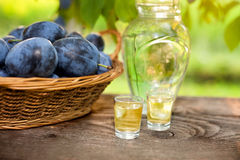 Plum brandy and basket with plums Stock Photography