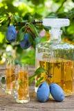 Plum brandy or rakija Royalty Free Stock Image