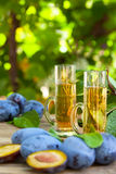 Plum brandy or schnapps Royalty Free Stock Photography