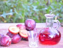 Plum brandy or schnapps with fresh and ripe plums in the grass. Bottle of homemade brandy and jiggers Stock Photography