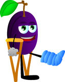 Plum with a broken leg walking on crutches Stock Images