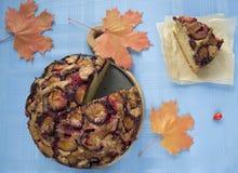Plum cake Royalty Free Stock Images