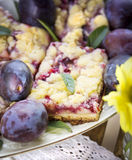 Plum cake on plate with mint Stock Image