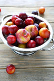 Plum and cherry plum in drops of water Royalty Free Stock Photo