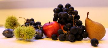 Plum chestnut apple pear grapes fruit nice. Fruit nice picture ideal motive for the kitchen Stock Photo