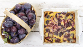 Plum clafoutis. With a basket of plum Stock Image