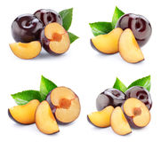 Plum collection isolated Stock Photography