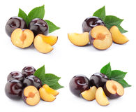 Plum collection isolated Royalty Free Stock Photography