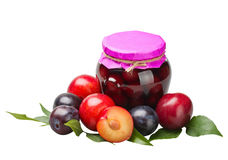 Plum compote and fresh plums Stock Photos