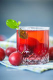 Plum compote Stock Photography
