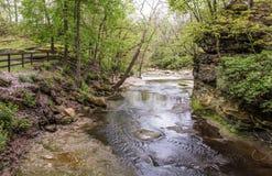 Plum Creek en primavera Fotos de archivo libres de regalías