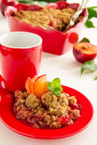 Plum crumble. Stock Images