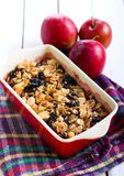 Plum crumble with oat and raisin topping Stock Images