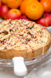 Plum crumble tart Royalty Free Stock Image
