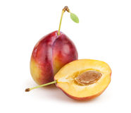 Plum cut half Stock Photography