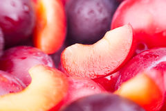 Plum cut slice Stock Image