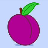 Plum - doodle Royalty Free Stock Image