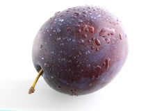 Plum with drops Stock Photos