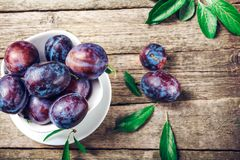 Plum. Fresh plum. Harvest. Autumn harvest. Autumn. Blue plums. Yellow plum. Fresh plums on a wooden surface. Fresh plums on wooden. Table background Stock Image
