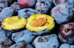 Plum, Fruit, Cut In Half, Stone Stock Photos