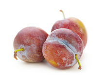 Plum fruit isolated Stock Photography