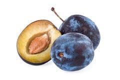 Plum fruit Stock Photography