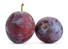 Plum fruit on white Stock Images