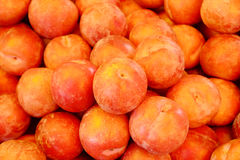 Plum Fruits. Fresh plums background royalty free stock image