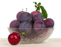 Plum fruits Royalty Free Stock Photo