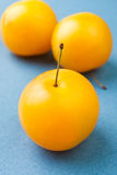 Plum group Stock Image
